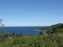 Land for sale in Cap-Chat, Gaspésie/Îles-de-la-Madeleine, Rue  Notre-Dame Ouest, 15957612 - Centris