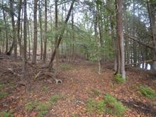 Lot for sale in Notre-Dame-du-Laus, Laurentides, 1556, Chemin du Ruisseau-Serpent, 15502129 - Centris