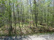Lot for sale in Gore, Laurentides, Chemin  John-Chambers, 20431155 - Centris