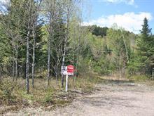 Terrain à vendre à Mont-Tremblant, Laurentides, Impasse de la Savane, 12591010 - Centris