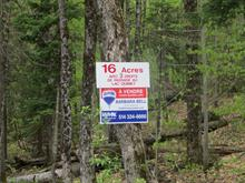 Lot for sale in Sainte-Anne-des-Lacs, Laurentides, Chemin de Sainte-Anne-des-Lacs, 23787849 - Centris