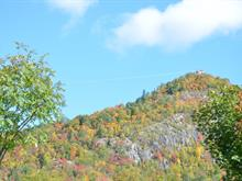 Terre à vendre à Mont-Tremblant, Laurentides, Chemin de Cassiopée, 9847397 - Centris
