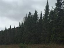 Terre à vendre à Petite-Rivière-Saint-François, Capitale-Nationale, Route  138, 28907977 - Centris