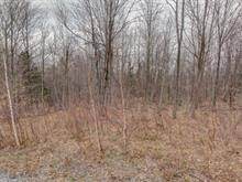 Lot for sale in Tingwick, Centre-du-Québec, 191, Chemin du Hameau, 13054650 - Centris