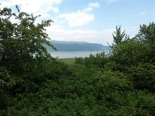 Lot for sale in Baie-Saint-Paul, Capitale-Nationale, Chemin de la Pointe, 14094688 - Centris