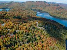 Terrain à vendre à Lac-Tremblant-Nord, Laurentides, Rive du Lac-Tremblant, 22341731 - Centris
