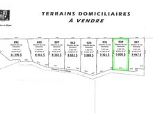 Terrain à vendre à Saint-Eugène-de-Guigues, Abitibi-Témiscamingue, Chemin du Lac-Cameron, 25213611 - Centris