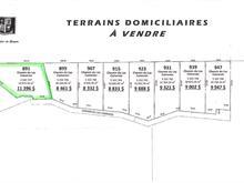 Terrain à vendre à Saint-Eugène-de-Guigues, Abitibi-Témiscamingue, Chemin du Lac-Cameron, 15667465 - Centris