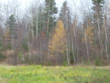 Lot for sale in Lac-Kénogami (Saguenay), Saguenay/Lac-Saint-Jean, Chemin du Quai, 14246674 - Centris