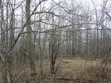 Lot for sale in North Hatley, Estrie, Rue  Hovey, 13229986 - Centris