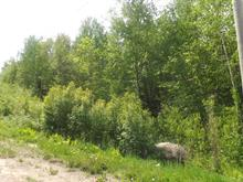Lot for sale in Saint-Faustin/Lac-Carré, Laurentides, Chemin des Alouettes, 20531597 - Centris