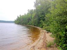Lot for sale in Latulipe-et-Gaboury, Abitibi-Témiscamingue, 23, Chemin du Lac-Brisebois, 11517694 - Centris
