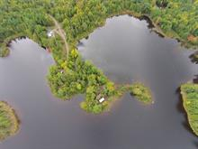 Maison à vendre à L'Isle-aux-Allumettes, Outaouais, 18, Île  Leblanc, 28497046 - Centris