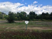 Terrain à vendre à Pontiac, Outaouais, 6, Chemin  Quero, 10849300 - Centris