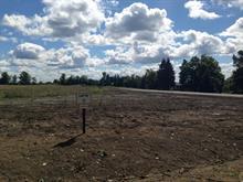Lot for sale in Pontiac, Outaouais, 156, Chemin des Lilas, 18556082 - Centris