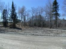 Lot for sale in Barraute, Abitibi-Témiscamingue, 2e Rue Ouest, 9596896 - Centris