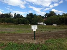 Terrain à vendre à Pontiac, Outaouais, 2, Chemin  Quero, 10554714 - Centris