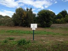 Terrain à vendre à Pontiac, Outaouais, 8, Chemin  Quero, 20510038 - Centris