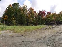 Terrain à vendre à Thetford Mines, Chaudière-Appalaches, 4088, Chemin des Bois-Francs Est, 15690806 - Centris