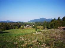 Terre à vendre à Magog, Estrie, Rue  Valiquette, 22890511 - Centris