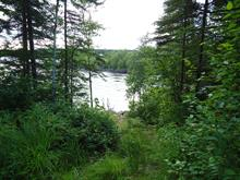 Lot for sale in Sainte-Monique, Saguenay/Lac-Saint-Jean, Rang 6 Rivière Péribonka, 15935937 - Centris