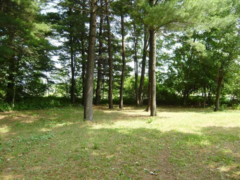 Lot for sale in Sainte-Sophie-de-Lévrard, Centre-du-Québec, Rang  Saint-Antoine, 25535897 - Centris