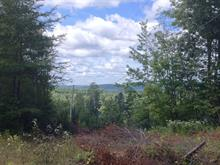 Lot for sale in Wentworth-Nord, Laurentides, Chemin  Spotz, 11798510 - Centris