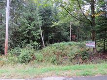 Lot for sale in Rivière-Rouge, Laurentides, Chemin du Lac-Jaune, 28839866 - Centris