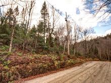 Terrain à vendre à Saint-Adolphe-d'Howard, Laurentides, Chemin du Lac-des-Trois-Frères, 14319178 - Centris