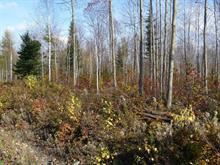 Lot for sale in Saint-Benjamin, Chaudière-Appalaches, Rue des Bosquets, 9374718 - Centris