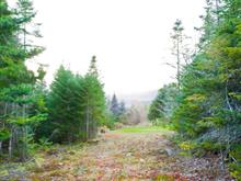 Lot for sale in Saint-Gabriel-de-Valcartier, Capitale-Nationale, 5e Avenue, 8740757 - Centris