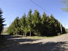 Terrain à vendre à Saint-Roch-des-Aulnaies, Chaudière-Appalaches, Rue de l'Anse-des-Marins, 20737866 - Centris