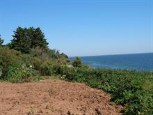 Lot for sale in Port-Daniel/Gascons, Gaspésie/Îles-de-la-Madeleine, Route  132, 19866626 - Centris