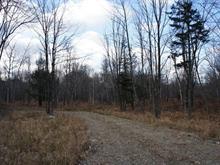 Terrain à vendre à Sutton, Montérégie, Chemin des Montagnais, 1369905 - Centris