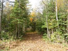 Lot for sale in Amherst, Laurentides, Chemin  Maskinongé, 1358844 - Centris