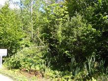 Lot for sale in Sainte-Anne-des-Lacs, Laurentides, Chemin des Papillons, 13179680 - Centris