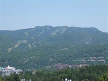 Terrain à vendre à Mont-Tremblant, Laurentides, Chemin  Claude-Lefebvre, 10190036 - Centris