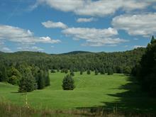 Terre à vendre à Arundel, Laurentides, Route de Crystal Falls, 17626162 - Centris