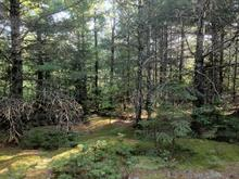 Lot for sale in Saint-Barthélemy, Lanaudière, 710, Chemin du 9e-Rang-York, 27808727 - Centris