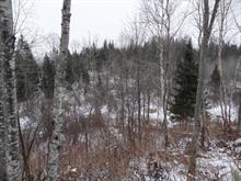 Terrain à vendre à Montcerf-Lytton, Outaouais, 1, 6e Rang, 19937077 - Centris