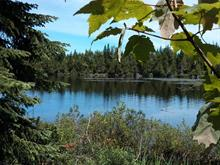 Lot for sale in Nantes, Estrie, Chemin du Lac-Whitton, 14100014 - Centris