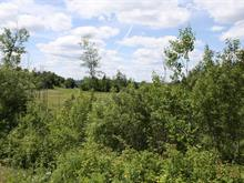 Lot for sale in Saint-Gabriel-de-Valcartier, Capitale-Nationale, Rue  Jacques-Giroux, 26863270 - Centris