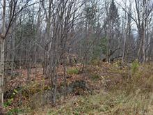 Lot for sale in Saint-Faustin/Lac-Carré, Laurentides, Chemin des Aigles, 28141263 - Centris