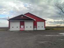 Bâtisse commerciale à vendre à Louiseville, Mauricie, 1231, boulevard  Saint-Laurent Ouest, 23627650 - Centris