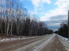 Terrain à vendre à Petite-Rivière-Saint-François, Capitale-Nationale, Chemin du Hameau, 27871715 - Centris