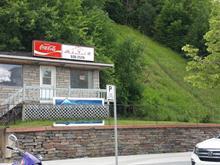 Bâtisse commerciale à vendre à Shawinigan, Mauricie, 762, 5e rue de la Pointe, 17109263 - Centris