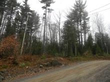 Lot for sale in Gore, Laurentides, Rue des Trilliums, 27384232 - Centris