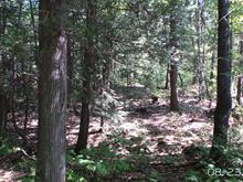 Lot for sale in Sainte-Julienne, Lanaudière, 4e Rang, 24216304 - Centris