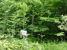Lot for sale in Wentworth-Nord, Laurentides, Chemin  Lobel, 18102865 - Centris