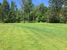 Lot for sale in Saint-Raymond, Capitale-Nationale, Rang du Nord, 13817237 - Centris
